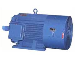 YTSP系列变频调速三相异步电动机